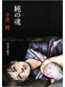 Jun Hayami Beauty Labyrinth of Razors (front cover)