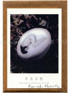 Kenichi Murata 11 Sleeping Princesses Postcard Set