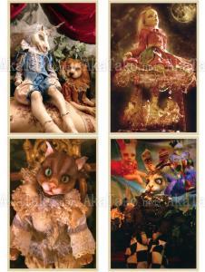 Mari Shimizu Postcard Set 12