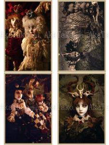 Mari Shimizu Postcard Set 13