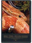 Daikichi Amano Snake and Reptiles DVD