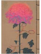 Fuco Ueda Tohoku Notebook - back cover