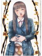 Jun Hayami Nietagiru Mitsu - front cover