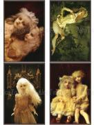 Mari Shimizu Postcard Set 9