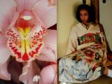 Araki by Taschen - flower and girl