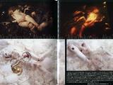 Talking Heads No. 46 Magazine Secret Love Toy - Kaoru Mori x Atsushi Tani