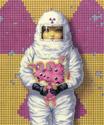 Trevor Brown - Radioactive Rabbit